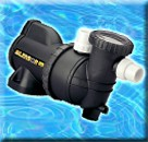 Pool Pumps (10)